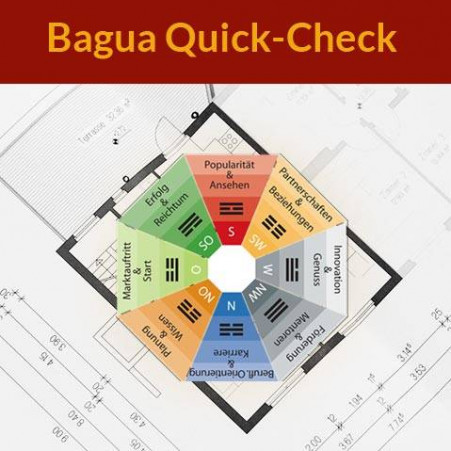 Bagua Quick-Check